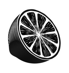 half a lemon black and white graphic drawing vector image