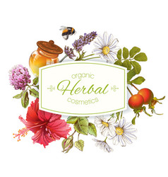 Herbal cosmetics banner vector