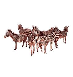 herd standing zebras drawn in technique vector image