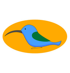 blue hummingbird on white background vector image