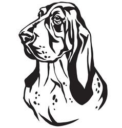 decorative portrait basset hound vector image