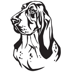 decorative portrait of basset hound vector image