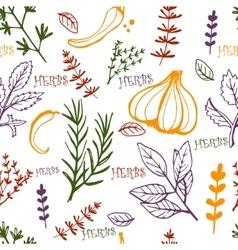 Seamless vintage pattern hand drawn herbs vector