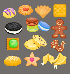 sweet cookie cakes tasty snack delicious vector image vector image