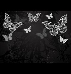butterflies drawn in chalk vector image vector image