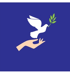 dove hand vector image