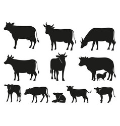 Cow silhouette black cows and calf mammal animals vector