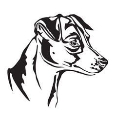 Decorative portrait of jack russell terrier vector
