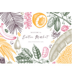 Design with hand drawn exotic fruits and nuts vector