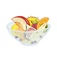 Tropical exotic fruit salad in bowl isolated on vector