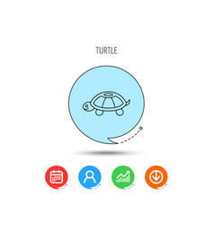 Turtle icon tortoise sign vector