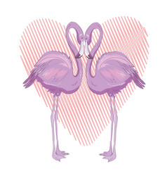 pink flamingo isolated on the white background vector image vector image