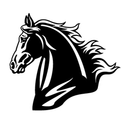horse head black and white vector image vector image