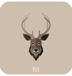 Animal Portrait With Flat Design Deer vector