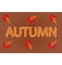 Autumn color leaves text vector image