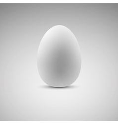 Egg Realistic eps10 vector image