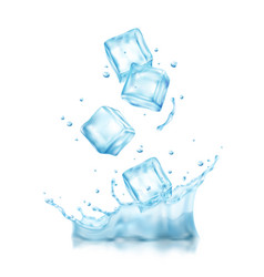 Realistic ice water composition vector