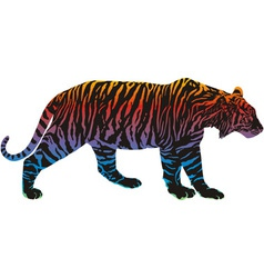 rainbow in the tiger vector image vector image