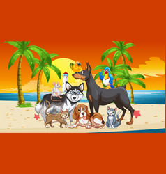 beach outdoor scene at sunset time with group of vector image