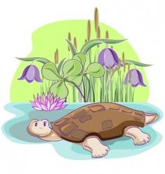 Cartoon tortoise vector