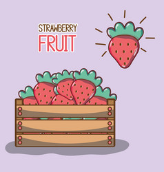 Delicios and fresh strawberry fruit inside basket vector