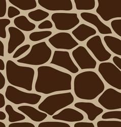 eather of giraffe vector image
