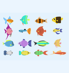 Exotic tropical fish race different breed colors vector