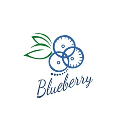 Logo blueberry vector