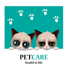 pet care service pet shop logo health and life vector image