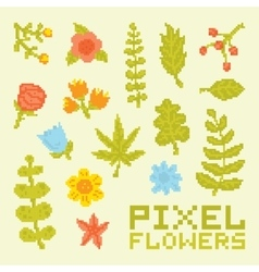 Pixel art isolated flowers set vector image vector image