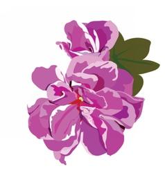 Spring Summer Flower vector