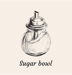 sugar bowl vector image
