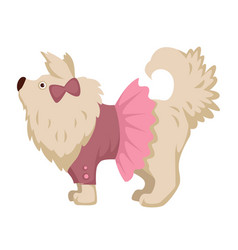 pet dog in pink dress clothes cartoon icon vector image vector image