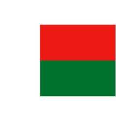 flag of madagascar vector image