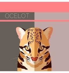 Flat postcard with Ocelot vector image