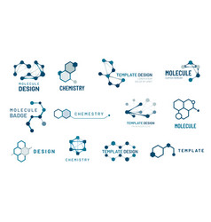 hexagonal molecule badge molecular structure logo vector image