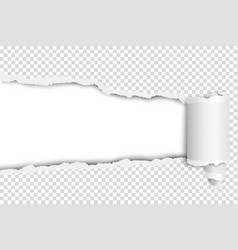 Ragged long hole in transparent sheet vector