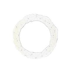 torn paper circle vector image