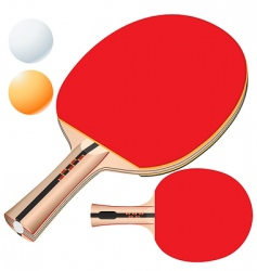 Vector table tennis equipment vector