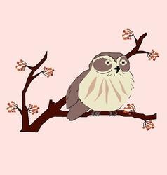 owlet vector image vector image