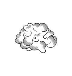 black and white sketch of the brain vector image