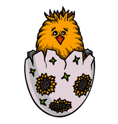 cartoon image of chick easter symbol vector image