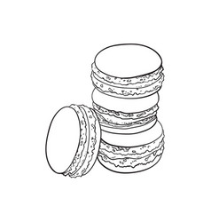 sketch hand drawn macaroni vector image