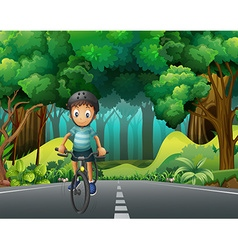 Boy with helmet riding bicycle on the road vector image