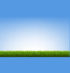 green grass border with blue sky vector image
