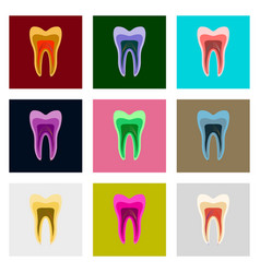 Icons set in flat style tooth vector