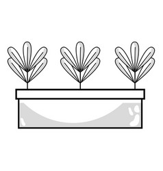 Line ecological plants with leaves inside vector