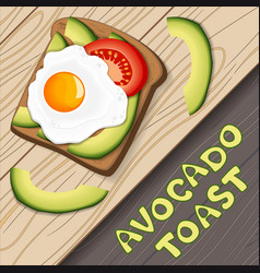toast with avocado and fried egg vector image