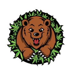 Bear cannabis mascot deign vector