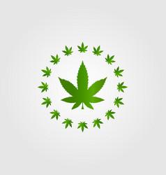 Circle cannabis marijuana hemp leaf silhouette vector